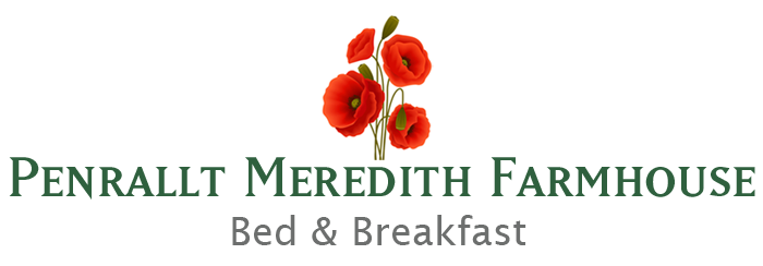 Penrallt Meredith Bed and Breakfast